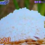 嵐にしやがれ>>松本潤in魚沼[新米を極める]SS米のお値段は??