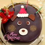 8万個売れたクリスマスケーキって??[美味しいキャラクターケーキ]口コミがスゴい☆濃厚ザッハトルテ